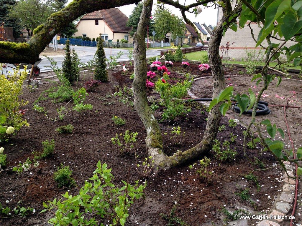 Gestaltung eines Hausgartens