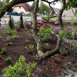 Bepflanzung Gartengestaltung Kalisch